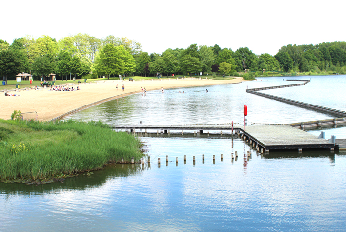 Zwemvijver en zandstrand De Nekker te Mechelen