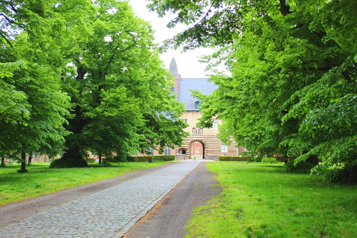 Lindendreef abdij van Tongerlo