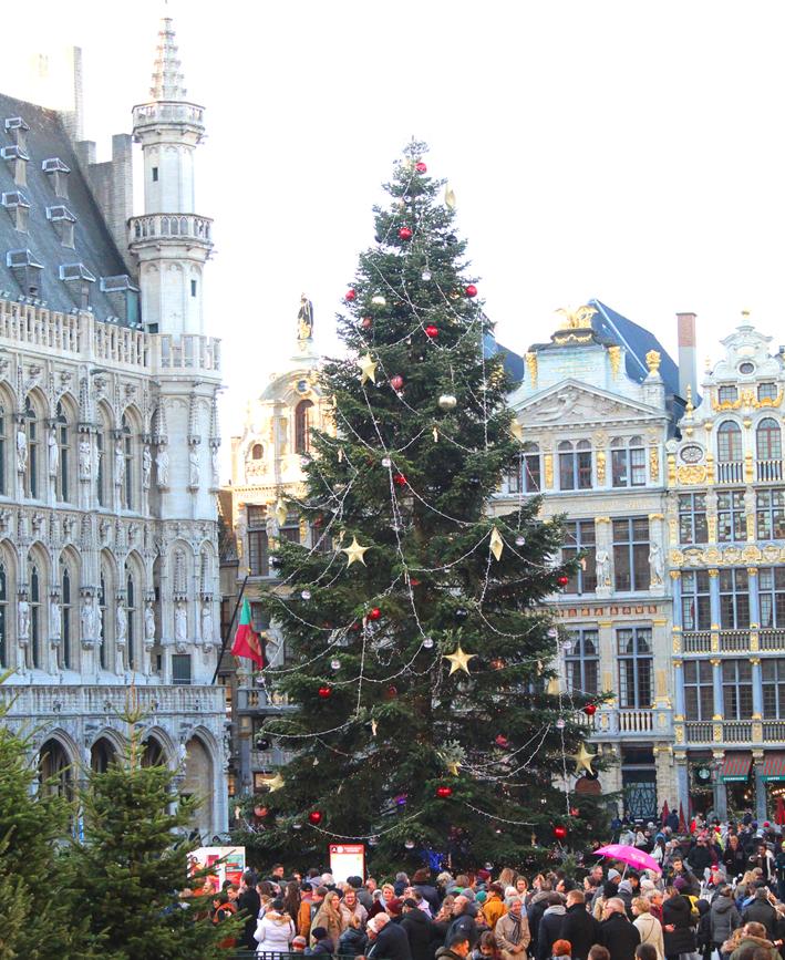 Kerstboom Grote Markt Winterpret Brussel 2019
