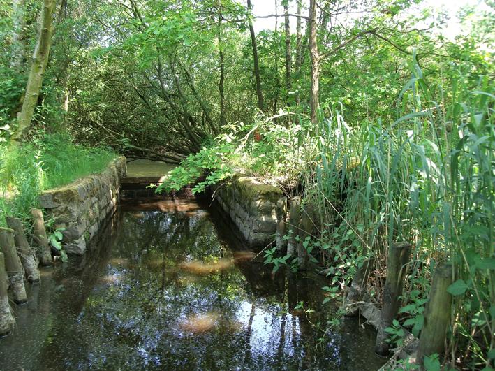 Wtaerloop in Landschap De Liereman