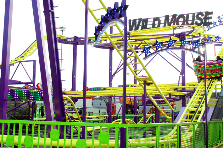 Wild Mouse Winterfoor Aalst 2020