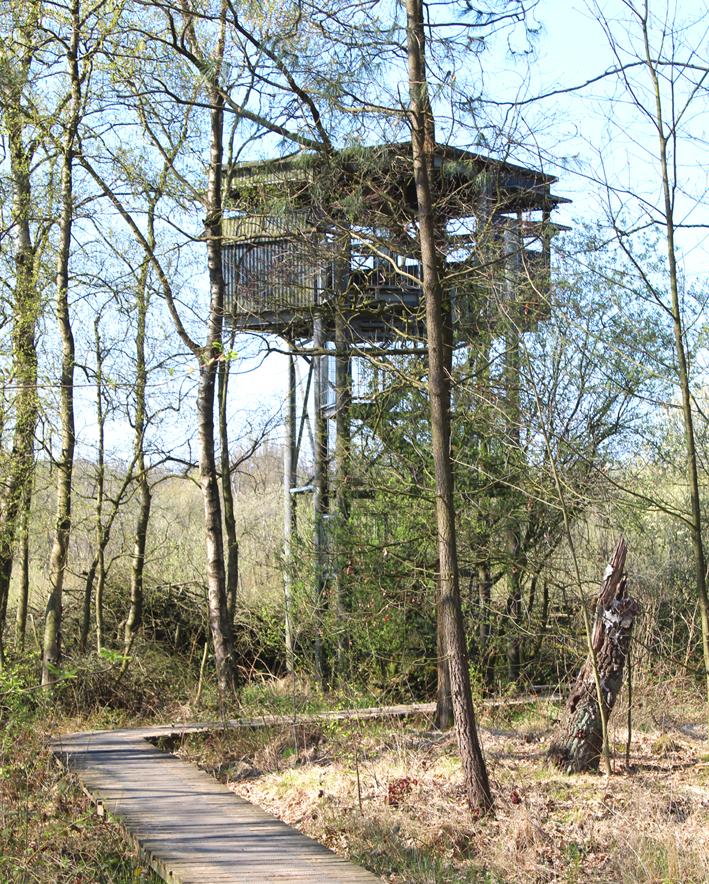 Uitkijktoren Landschap De Liereman