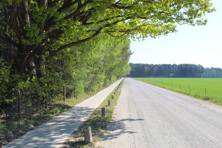 De weg Steenovens Wandelen in Postel