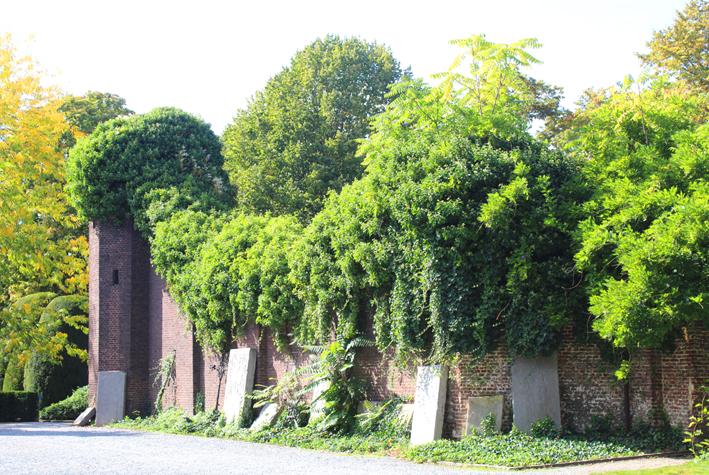Ruïne begijnhofkerk Hasselt Stadswandeling in Hasselt