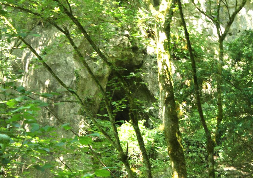 Prehistorische grotten Montaigle