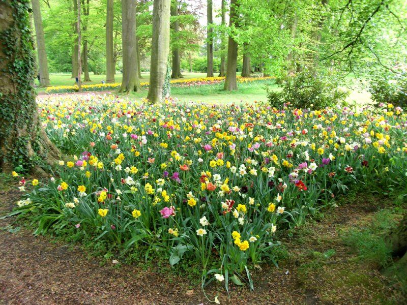Bloemenlaan Floralia Brussels 2021