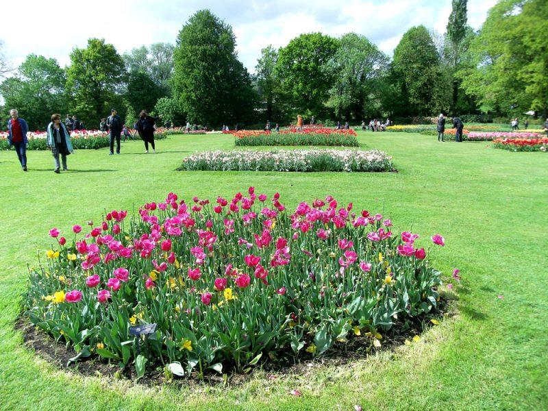 Bloemenperken op grasweide Floralia Brussels
