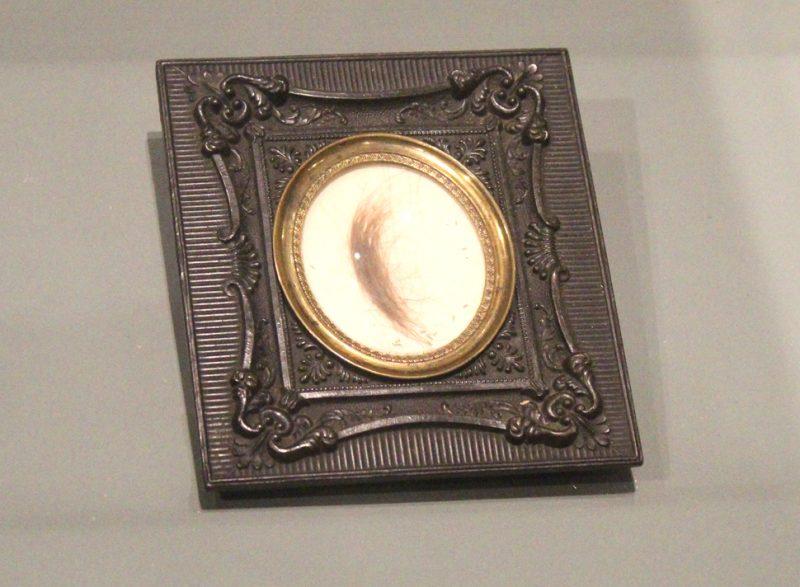 Napoleon Haarlok