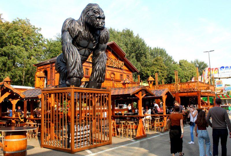 King Kong Bar kermis Hasselt